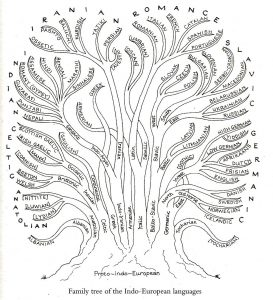 Family tree of the Indo-European languages