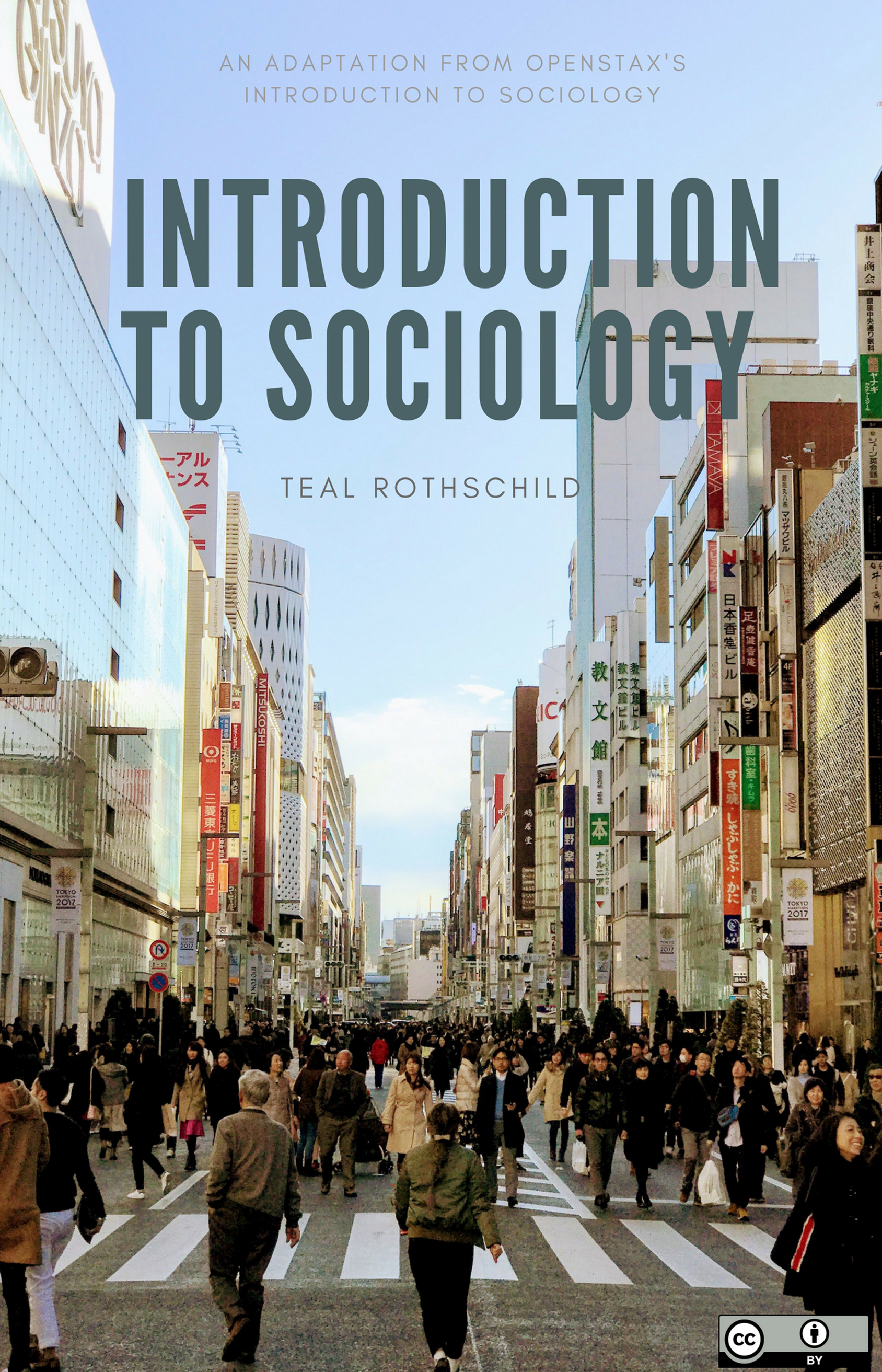 Cover image for Rothschild's Introduction to Sociology