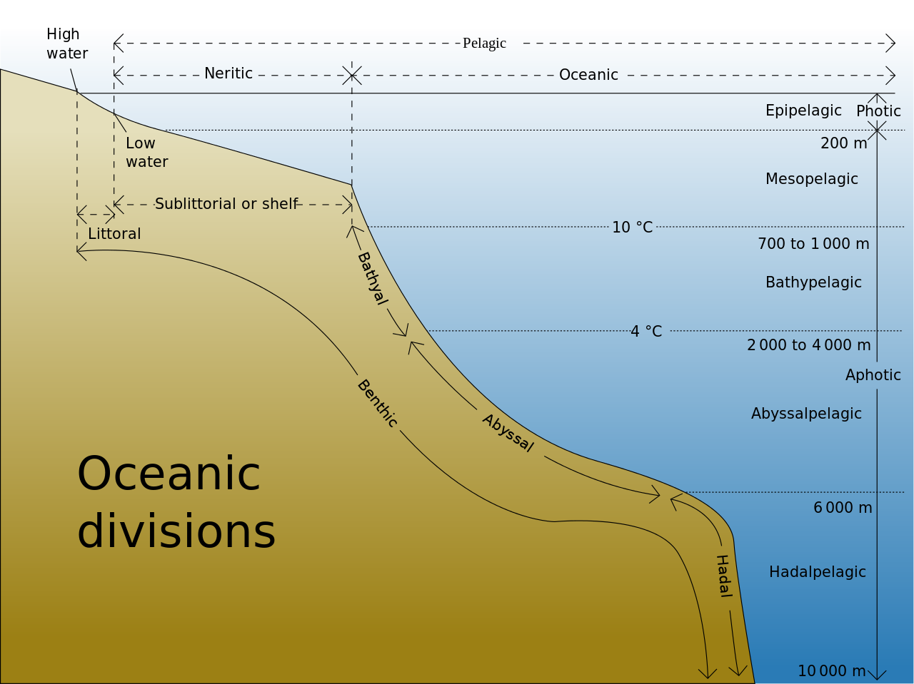 1 3 Marine Provinces Introduction To Oceanography